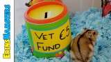 STARTING A VET FUND