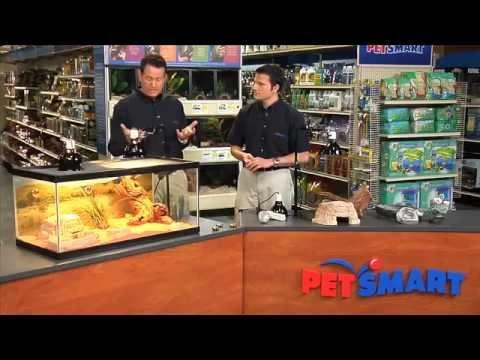 Terrariums for Reptiles – PetSmart